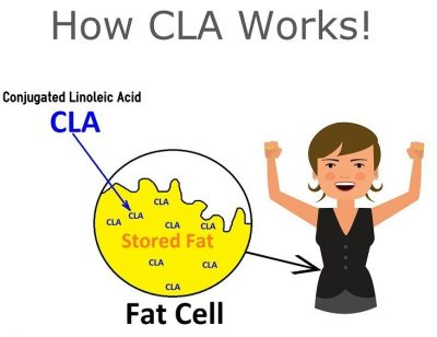 how cla works